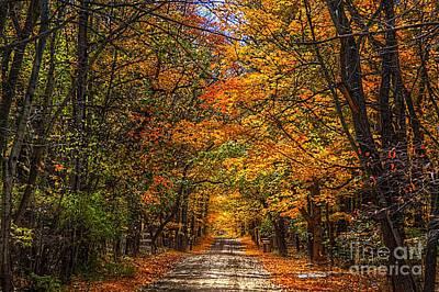 Its A Michigan Fall Print by Robert Pearson