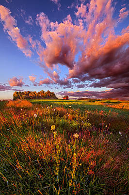 It's Like Going To Heaven With Your Feet Still On The Ground Print by Phil Koch