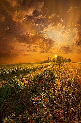 Heaven Photograph - It's Not The Heat. It's The Humidity by Phil Koch