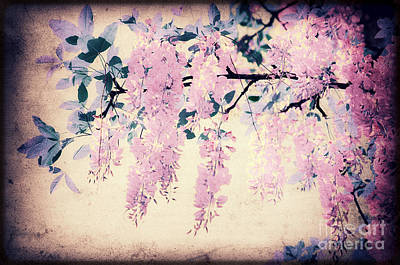 It's Springtime Print by Angela Doelling AD DESIGN Photo and PhotoArt