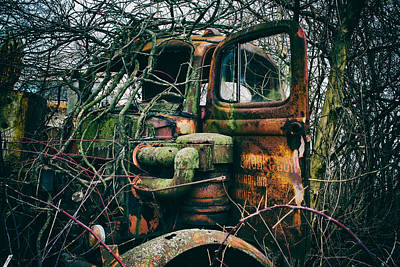 Photograph - I've Created A Monster  by Off The Beaten Path Photography - Andrew Alexander