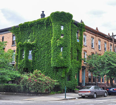 Ivy Covered House In Fairmount Print by Bill Cannon