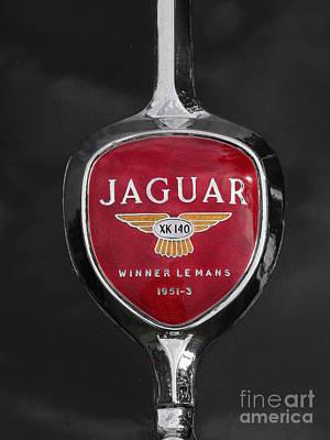 Jaguar Medallion Original by Neil Zimmerman