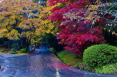 Photograph - Japanese Autumn by Kobby Dagan