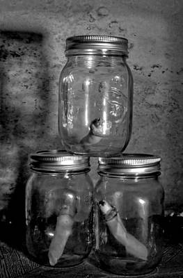 Halloween Photograph - Jar Of Fingers by Kyle West