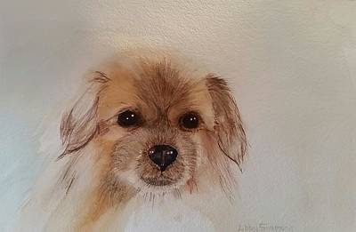 Tibetan Spaniel Painting - Jazz The Tibetan Spaniel by Libby Simmons