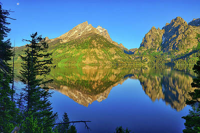 Nature Photograph - Jenny Lake Morning Reflections by Greg Norrell