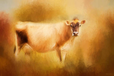Cow Digital Art - Jersey Cow  by Michelle Wrighton