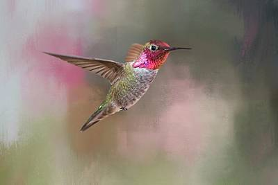 Ruby-throated Hummingbird Photograph - Jewel Of Jerome by Donna Kennedy