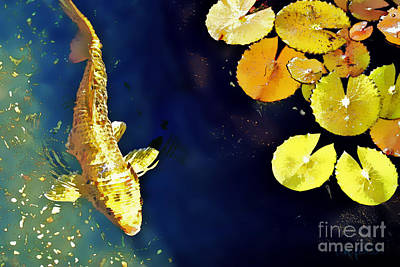Koi Digital Art - Jewel Of The Water by Barb Pearson