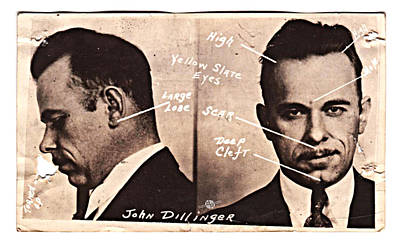 Bank Robber Painting - John Dillinger Mug Shot Identifying Features by Tony Rubino