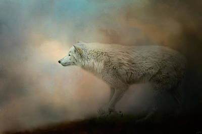 Arctic Wolf Photograph - Journey Of The Timber Wolf by Jai Johnson