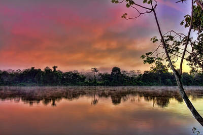 Caribbean Photograph - Jungle Sunrise by Nadia Sanowar