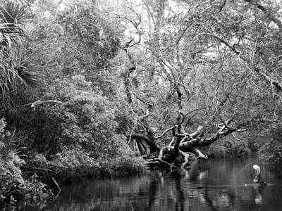 Juniper Creek Reflections In Black And White Print by Warren Thompson