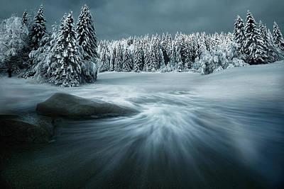 Fir Trees Photograph - Just A Dream by Arnaud Maupetit