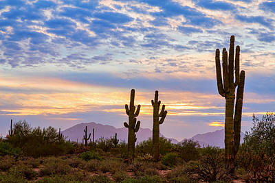 Just Another Colorful Sonoran Desert Sunrise Print by James BO Insogna