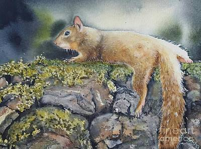 Squirrel Painting - Just Chillin by Patricia Pushaw