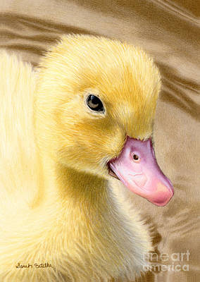 Color Pencil Drawing - Just Ducky by Sarah Batalka