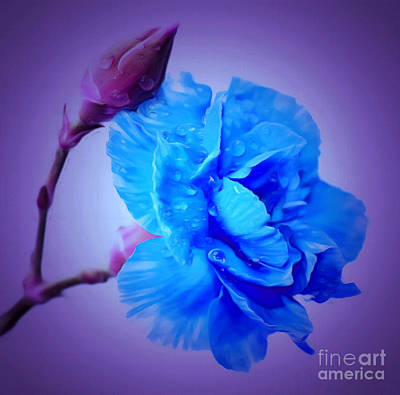Blue Flowers Photograph - Just Remember I Love You by Krissy Katsimbras