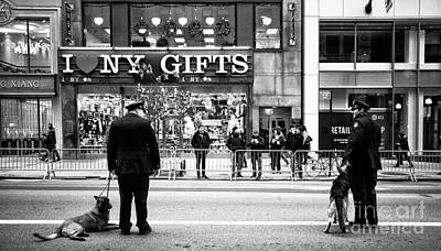 New York Cops Photograph - K-9 In The City by John Rizzuto