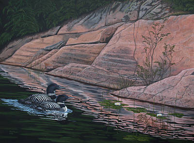 Kawartha Loons Original by Ron Plaizier
