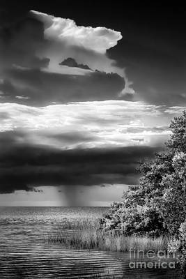 Spring Scenes Photograph - Keep An Eye On The Sky by Marvin Spates