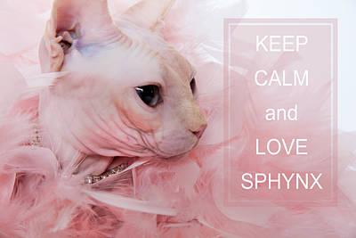 Keep Calm And Love Sphynx Cat Print by Zina Zinchik