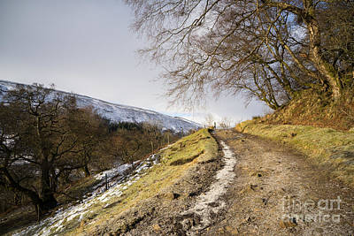 Yorkshire Photograph - Keld To Muker by Stephen Smith