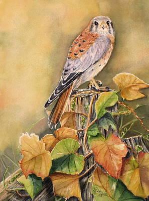 Kestrel In Fall Print by Patricia Pushaw