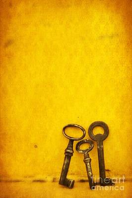 Keys Photograph - Key Family by Priska Wettstein