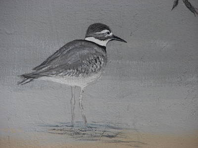Killdeer Painting - Killdeer by Dos Artesanos