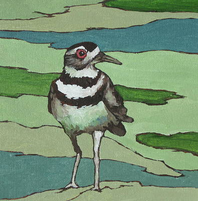 Killdeer Painting - Killdeer by Sandy Tracey