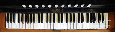 Photograph - Kimball - Chicago by Liane Wright