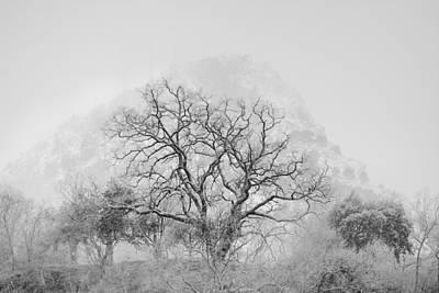 King Mountain Monochrome Print by Guido Montanes Castillo