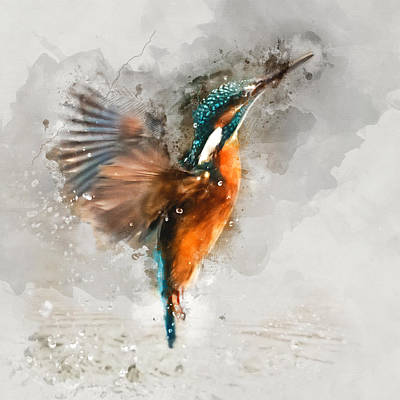 Animal Painting - Kingfisher Bird Watercolor Portrait 1 - By Diana Van by Diana Van