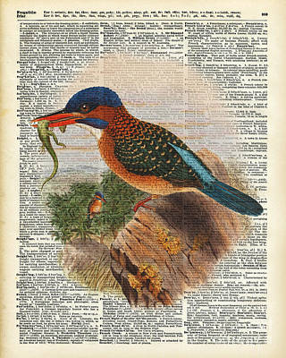 Kingfisher Bird With A Lizard Illustration Over A Old Dictionary Print by Jacob Kuch
