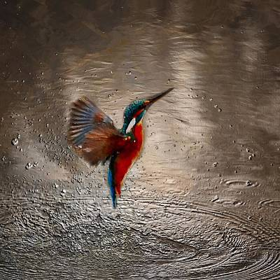 Kingfisher Digital Art - Kingfisher by Mark Taylor