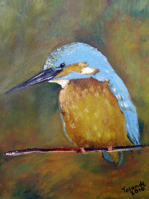 Kingfisher Painting - Kingfisher by Yolande Havenga