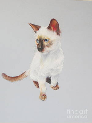 Painting - KIP by Karol Wyckoff