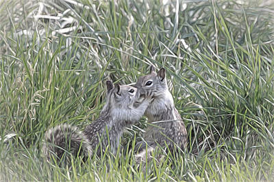 Squirrel Photograph - Kisses In The Grass by Donna Kennedy