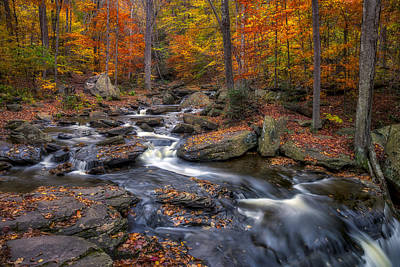 Kitchen Creek Print by Mark Papke