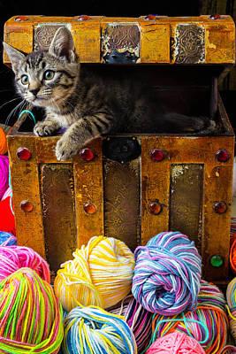 Kitten Hiding In Treasure Box Print by Garry Gay