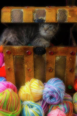 Kitten In A Box With Yarn Print by Garry Gay