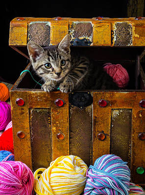 Kitten In Treasure Box Print by Garry Gay