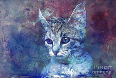 Pets Art Digital Art - Kitten by Jutta Maria Pusl