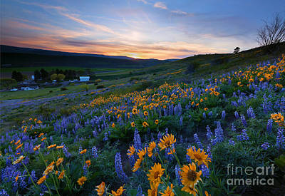 Kittitas Spring Sunset Print by Mike Dawson