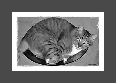 Kitty In Bowl In Black And White Print by Terry Mulligan