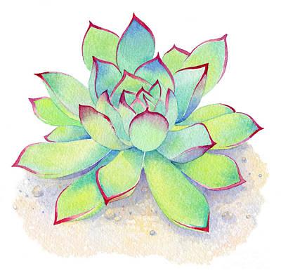 Kiwi Painting - Kiwi Aeonium by Laura Nikiel