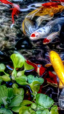 Goldfish Digital Art - Koi by Dan Stone
