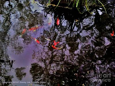 Koi Reflections Evening Print by Jamey Balester